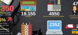 Peste 60.000 de firme s-au ,,evaporat'' din economie în 2019
